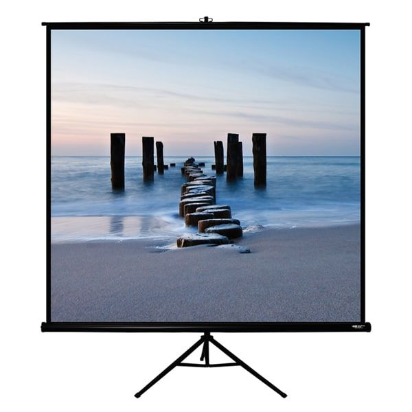 Office point 80X80 Wall mount manual projector screen