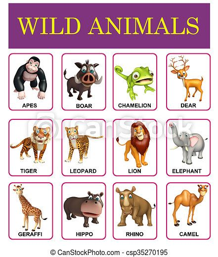 Longhorn charts:  Wild Animals [Approved]